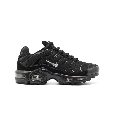 Женские кроссовки Nike Air Max Plus (TN) Silver-Black